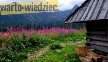Porada - Nocleg w Tatrach