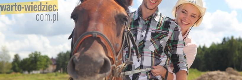 Turnusy z nauką jazdy konnej